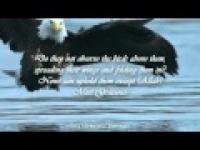 Al-Mulk - The Kingdom! - English Translation [67] ᴴᴰ