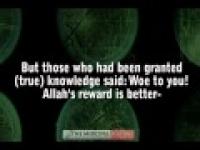 The Story - Naseer Al Qatami