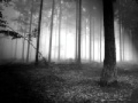 Pt. 01/03 Ghaflah/(Heedlessness)-Nouman Ali Khan