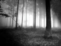 Pt. 03/03 Ghaflah/(Heedlessness)-Nouman Ali Khan