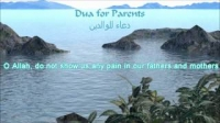 Muhammad Luhaidan | Du'a For Parents | English Translation