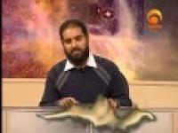 Eternal Message - Sh. Abdulhakeem Ali - 22
