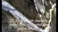 Salman Utaybi Surah Al-Waqiah Verses 10 - 50 * EMOTIONAL RECITATION *