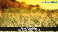 Islam Spread By Winning Hearts ᴴᴰ