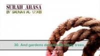 NEW  Surah Abasa (80) by Salman Al-Utaibi ®