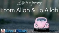 Life Is A Journey ᴴᴰ | From Allah To Allah
