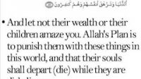The Success of the Mujrimun (sinners, polytheists, idol worshippers, disbelievers) is a deception.