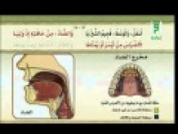 الإتقان لتلاوة القرآن  مخرج وسط الحلق وأدناه-مخرج أقصی اللسان ووسطه