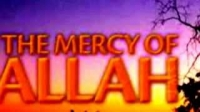 Don`t Despair from the Mercy of Allah by Karim AbuZaidDon`t Despair from the Mercy of Allah by Karim