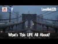 What's This Life All About? - [HD]