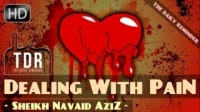 Dealing With Pain & Suffering ᴴᴰ ┇ Emotional ┇ by Sheikh Navaid Aziz ┇ The Daily Reminder ┇