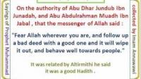 ترجمة الأربعین النوویة إنجلیزی الحدیث 18 اتق الله حیثما کنت Translation of the 40 Nawawi's Hadiths N