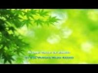 All in One - Abu Mussab Wajdi Akkari