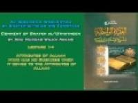 14. Attributes of Allaah - Abu Mussab Wajdi Akkari